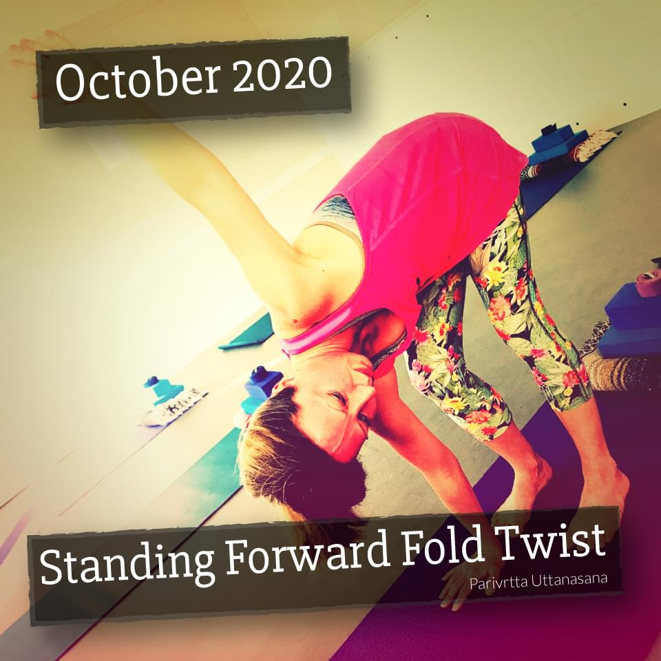 Standing Forward Fold Twise